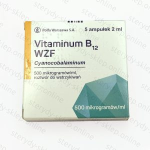 Witamina B12 wzf